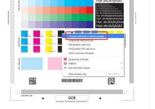 Чтобы воспользоваться тестовой страницей, нужно выбрать пункт «Открыть картинку в новой вкладке»