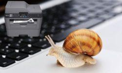 Причины, почему принтер долго думает перед печатью